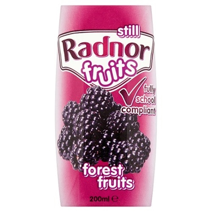 Picture of RADNOR FRUITS FOREST FRUIT 200ML X 24