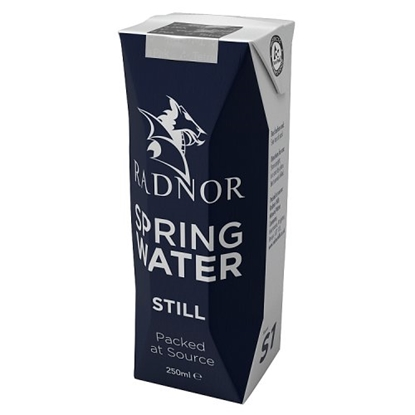 Picture of RADNOR HILL TETRA WATER 250ML X 24