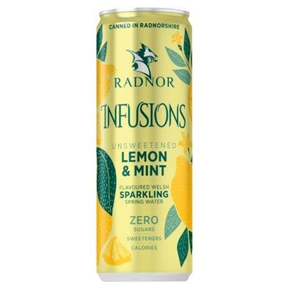 Picture of RADNOR INFUSION CAN SPARK LEMON & MINT 330ML