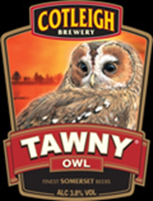Picture of COTLEIGH TAWNY OWL 500MLS X 12