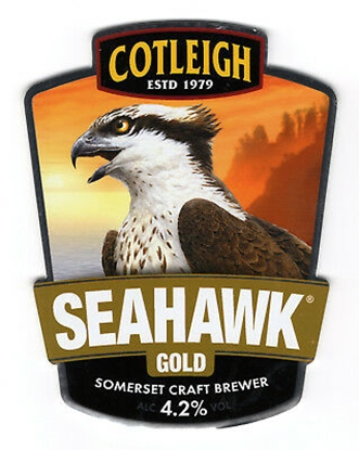 Picture of COTLEIGH SEAHAWK GOLD 500MLx12
