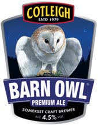 Picture of COTLEIGH BARN OWL 500MLS X 12