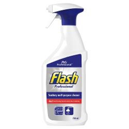 Picture of FLASH PROFESSIONAL SANITARY SPRAY 750ML X 10